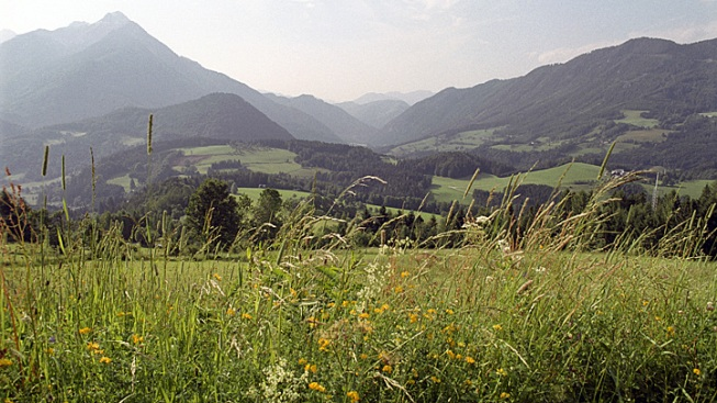 Austrian Village Votes to Change Troublesome Name