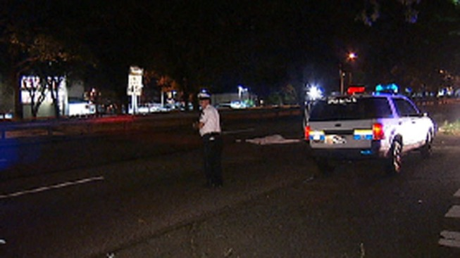 Police Investigate Fatal Hit-and-Run