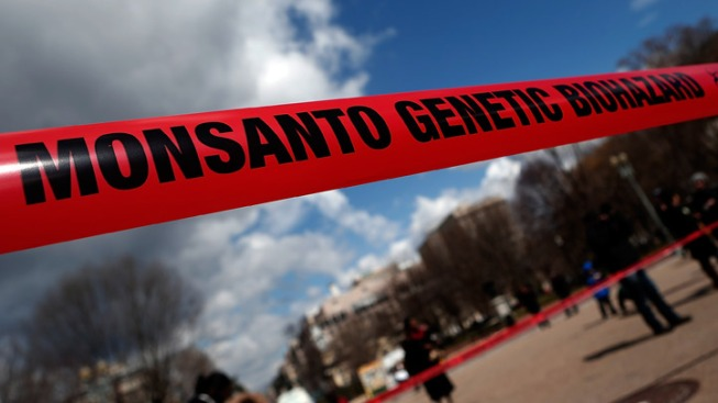 Protesters Rally Against Monsanto