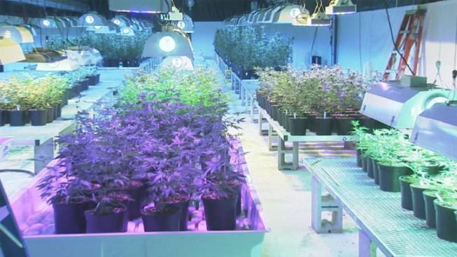 Few Patients So Far for NJ Marijuana Dispensary