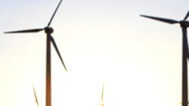 ACUA Offers Twice-Weekly Tours of Windmills