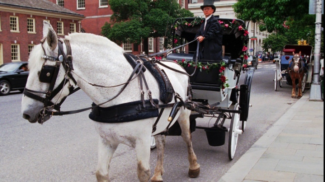 Councilman Wants to Extend Horse-Drawn Carriage Hours in Philly