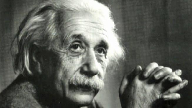 Einstein's Brain Matter Comes to Mütter