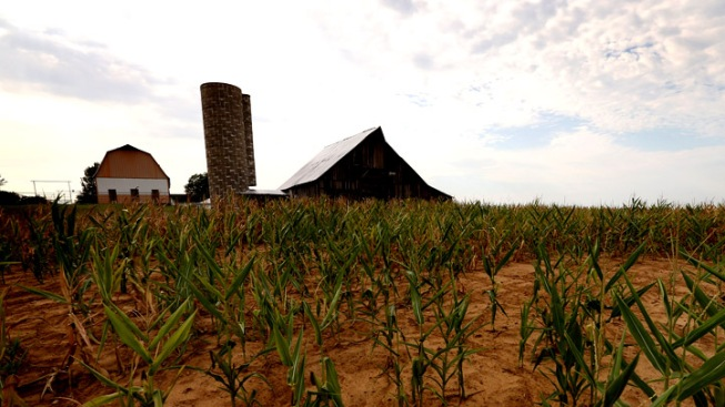 Student's Death Below Silo a Mystery