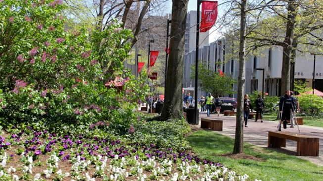 Greening Your Neighborhood Can Deter Crime: Study