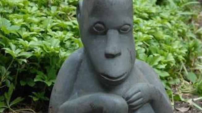 $10K Monkey Statues Stolen From Del. Yard