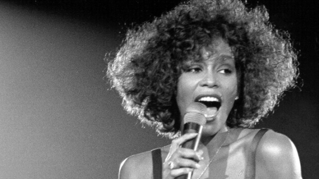 Whitney Houston's Dress, Earrings up for Auction