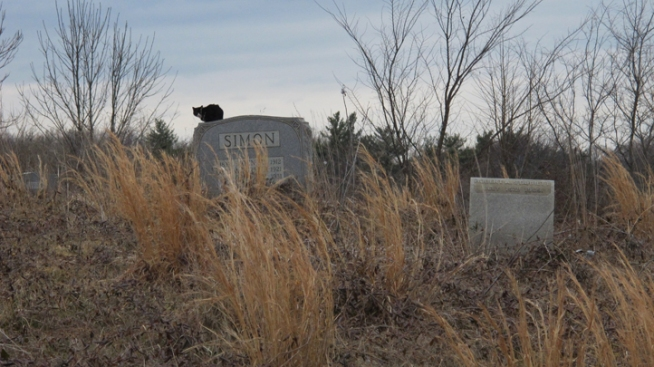 Could a Rebirth Be on the Horizon for Local Cemetery?