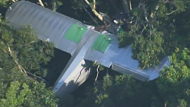 Small Plane Stuck in Tree After Crash