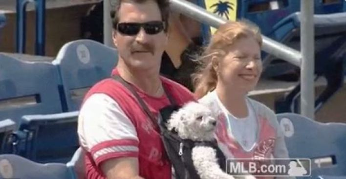 Check Out This Precious Pup Cheer On The Phillies