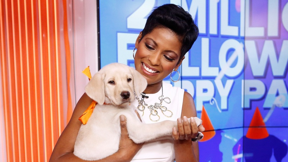 'Today' Show's Tamron Hall Replaces Bill Cosby on Temple University's Board of Trustees